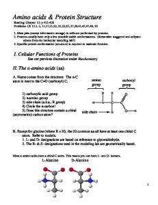 Amino acids & Protein Structure