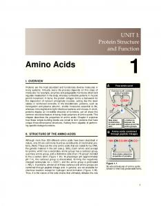 Amino Acids. UNIT I: Protein Structure and Function I. OVERVIEW COOH C II. STRUCTURE OF THE AMINO ACIDS. Free amino acid