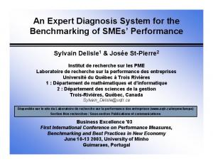 An Expert Diagnosis System for the Benchmarking of SMEs Performance