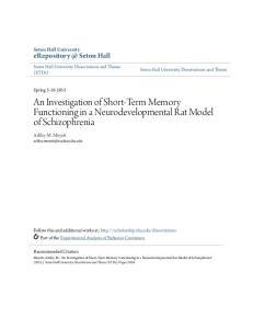 An Investigation of Short-Term Memory Functioning in a Neurodevelopmental Rat Model of Schizophrenia