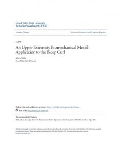 An Upper Extremity Biomechanical Model: Application to the Bicep Curl