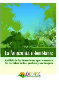 Análisis de las inversiones que amenazan los derechos de los pueblos y sus bosques