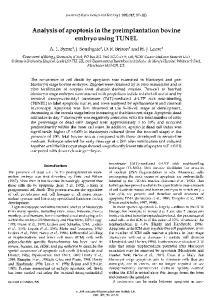 Analysis of apoptosis in the preimplantation bovine
