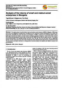 Analysis of the returns of small and medium-sized enterprises in Mongolia