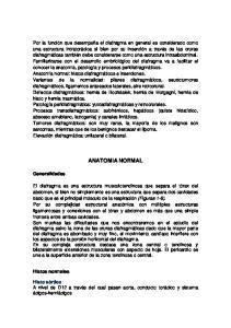 ANATOMIA NORMAL. Generalidades