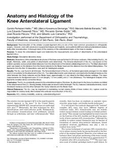 Anatomy and Histology of the Knee Anterolateral Ligament