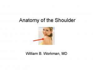 Anatomy of the Shoulder. William B. Workman, MD