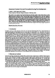 Anatomy of tomato fruit and fruit pedicel during fruit development