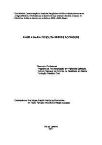 ANGELA MARIA DE SOUZA BREVES RODRIGUES