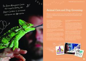 Animal Care and Dog Grooming