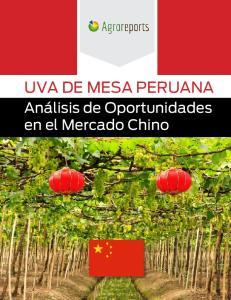 Anlisis de Oportunidades en el Mercado Chino