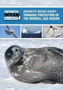Antarctic Ocean Legacy: the Weddell Sea Region