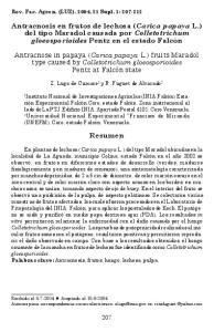 Antracnosis en frutos de lechosa (Carica papaya L.) del tipo Maradol causada por Colletotrichum gloeosporioides Pentz en el estado Falcón
