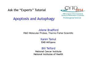 Apoptosis and Autophagy