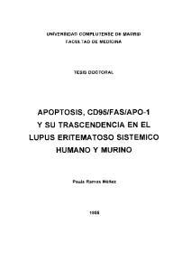 APOPTOSIS, CD95IFASIAPO-1 Y SU TRASCENDENCIA EN EL LUPUS ERITEMATOSO SISTEMICO HUMANO Y MURINO