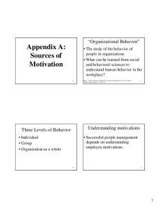 Appendix A: Sources of Motivation