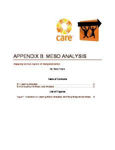 APPENDIX B: MESO ANALYSIS