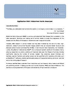 Application Brief: Abdominal Aortic Aneurysm