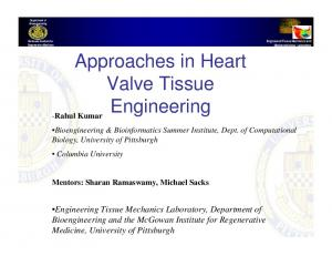 Approaches in Heart. Valve Tissue. Engineering