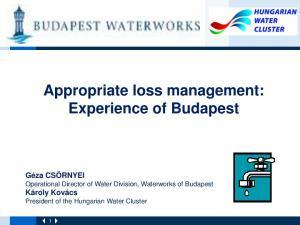 Appropriate loss management: Experience of Budapest