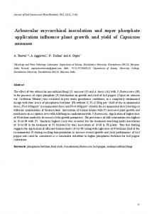 Arbuscular mycorrhizal inoculation and super phosphate application influence plant growth and yield of Capsicum annuum