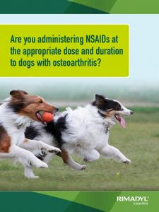 Are you administering NSAIDs at the appropriate dose and duration to dogs with osteoarthritis?