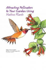 Attracting Pollinators to Your Garden Using Native Plants