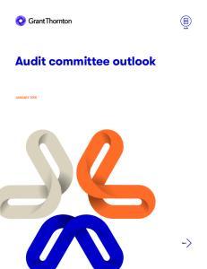 Audit committee outlook