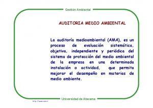 AUDITORIA MEDIO AMBIENTAL