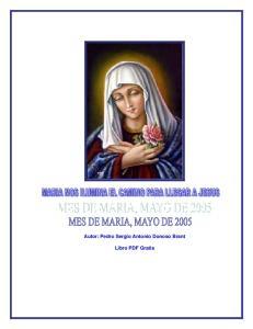 Autor: Pedro Sergio Antonio Donoso Brant Libro PDF Gratis