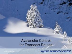 Avalanche Control for Transport Routes. Samuel Wyssen