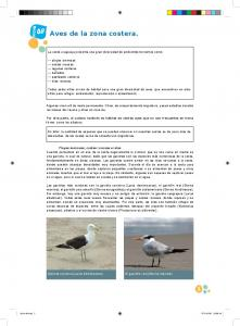 Aves de la zona costera