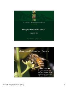 Avocado Pollination Basics