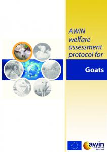AWIN welfare assessment protocol for. Goats