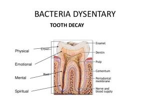 BACTERIA DYSENTARY TOOTH DECAY. Physical. Emotional. Mental. Spiritual