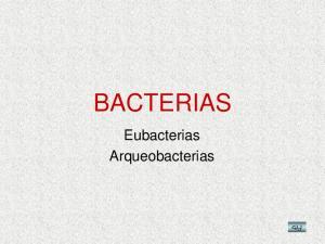 BACTERIAS. Eubacterias Arqueobacterias GLJ