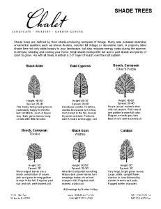 Bald Cypress. Black Gum Wildfire