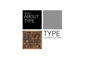BASIC ABOUT TYPE TYPE CLASSIFICATION