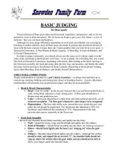 BASIC JUDGING. for Boer goats
