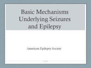 Basic Mechanisms Underlying Seizures and Epilepsy