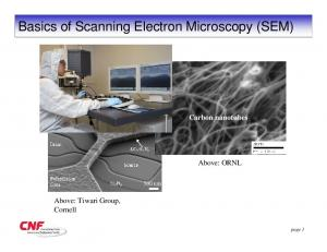 Basics of Scanning Electron Microscopy (SEM)