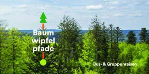 Baum wipfel pfade. Bus- & Gruppenreisen