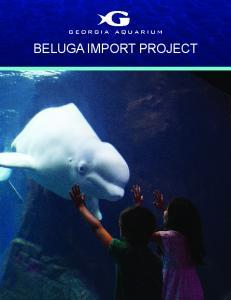 BELUGA IMPORT PROJECT