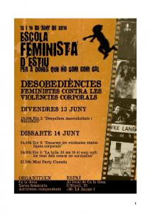 Benvingudes a l Escola Feminista d Estiu 2014!