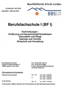 Berufsfachschule I (BF I)