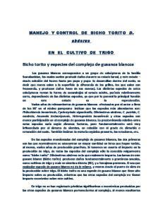 Bicho torito y especies del complejo de gusanos blancos