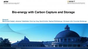 Bio-energy with Carbon Capture and Storage