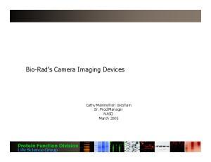 Bio-Rad s Camera Imaging Devices