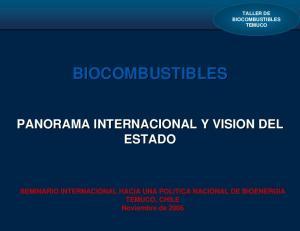 BIOCOMBUSTIBLES PANORAMA INTERNACIONAL Y VISION DEL ESTADO