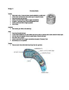 Biology 12 Circulatory System